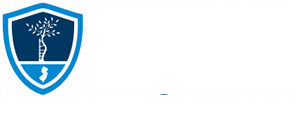 New Jersey Orthopaedic Institute